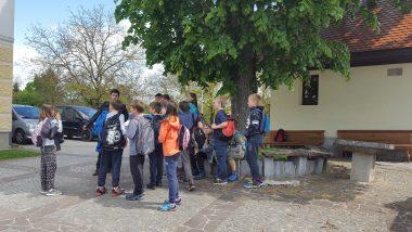 Petošolci na Radenskem polju