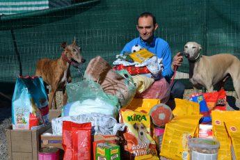 Zbiranje hrane za zapuščene hrte