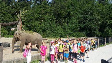 Šentjurčki v živalskem vrtu