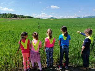 Obisk travnika
