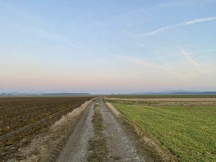7. a in 7. b sredi Ptujskega polja v CŠOD Štrk