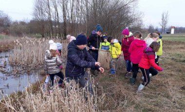 Dvoživke na Radenskem polju, naravoslovni dan