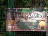 grafit13