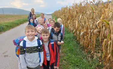 Obisk kmetije in sadovnjaka